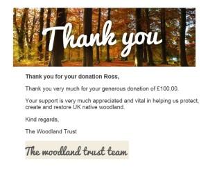 woodland_ty